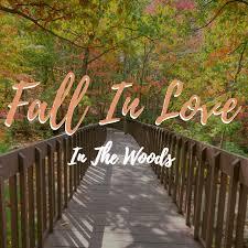 deals the woodlands resort
