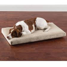 Foam Dog Bed The Pain Soothing Memory Foam Pet Bed Hammacher Schlemmer