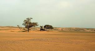 Snow In Sahara Algeria Demands French Compensation For Nuclear Tests In Sahara