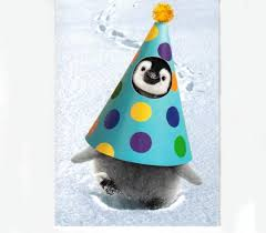 penguin cards tagged birthday penguins penguin gift shop