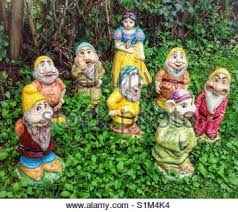 snow white and seven dwarfs garden gnomes in shop window stock
