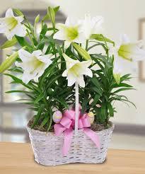 Flower Arrangements Ideas Flowers Easter Flower Arrangements Beautiful Easter Flower