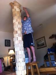 DIY Cat House Building Supplies Download easy wood bookshelf plans