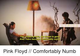 Lyrics For Comfortably Numb Lyrics The Child Is Grown The Dream Is Gone And I Have Become