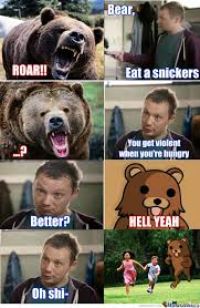 bear eat a snickers by gnomesayin meme center