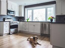 Dog Proof Laminate Flooring Tips For A Pet Friendly Home Hgtv