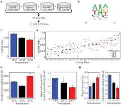 dynamic hyper editing underlies temperature adaptation in drosophila