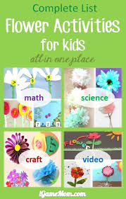 73 best preschool flower unit images on pinterest spring