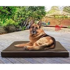 Medium Sized Dog Beds Pet Beds Shop The Best Deals For Nov 2017 Overstock Com