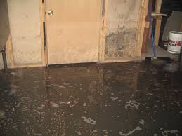 bold ideas sewage backup in basement clean up service company in