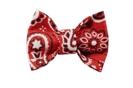 bandana bow print bow country time