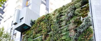 green roofs haammss
