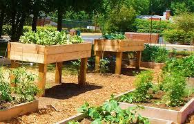Backyard Raised Garden Ideas Classy Design Raised Gardens Ideas Stylish Ideas 41 Backyard