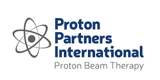 proton proton partnership