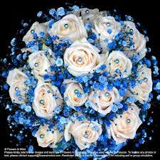 white and blue roses white with blue gypsophila bridal bouquet in stem