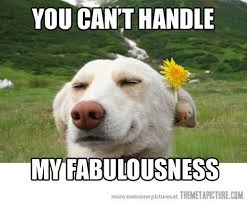 Flower Meme - you can t handle my fabulousness funny flower meme