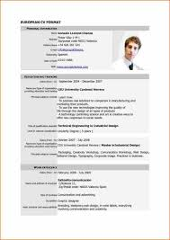 Sample Resume Format Basic by Professional Curriculum Vitae Format Template Resume Builder Cv
