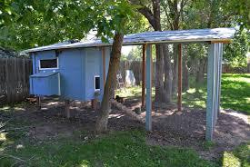 fort cluckins backyard chickens