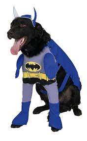 Halloween Costumes Large Dogs 5 Winter Costumes Large Dogs Batman Dog Costume