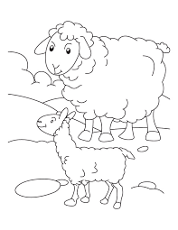 mother sheep lamb coloring download free mother