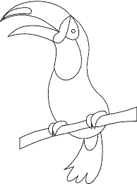toucan coloring pages download print toucan coloring pages