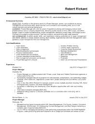 professional summary resume examples for software developer project manager resume resume samples better written resumes software programs list for resume