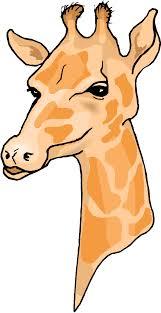 giraffe head clipart giraffe pinterest giraffe and pottery