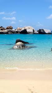 137 best british virgin islands bvi caribbean islands images
