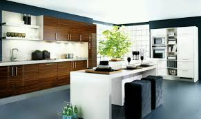 engaging pictures kitchen cabinet turntable storage exceptional