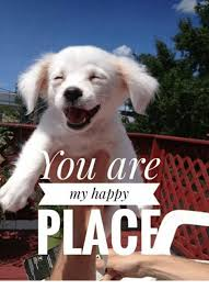 Happy Place Meme - you are my happy place meme on me me