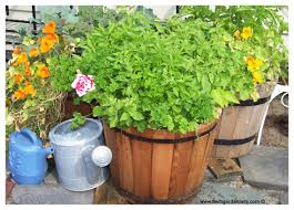 Cool Planters Herb Planter Where To Start With Pots Boxes Wagon Wheel