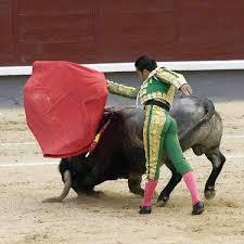 of men and bulls the spanish tradition of bullfighting verge
