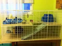 how to build a rabbit condo indoor rabbit hutch plans