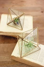 set of two glass geometric succulent terrariums woodwaves