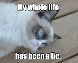 My Life Is Over Meme - my whole life has been a lie grumpy cat know your meme