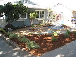 california native plants landscaping bye bye turf gardenerd