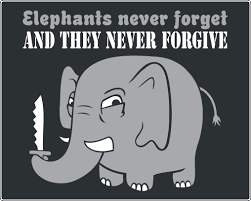 Elephant Meme - why do elephants have such great memory science abc