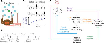 plos computational biology robust brain machine interface design