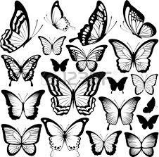 butterflies black silhouettes isolated on white background royalty