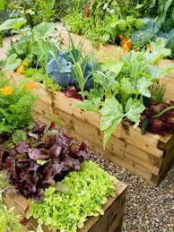 12 best raised bed garden images on pinterest raised gardens