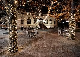 fort collins christmas lights christmas the loopy ewe yarn shop