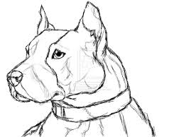 7 images of mean dog coloring pages blue pitbull coloring pages