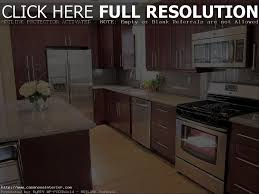 Red Mahogany Kitchen Cabinets Red Mahogany Kitchen Cabinets Home Decoration Ideas