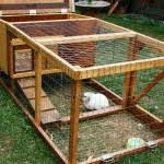 Homemade Rabbit Hutch Rabbit Hutch