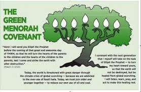 menorah tree of green menorah covenant coalition personal congregational