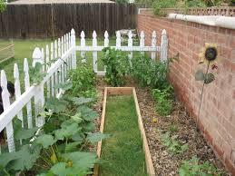 backyard vegetable garden gogo papa com