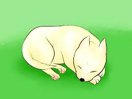 6 easy ways to draw a cartoon dog with pictures wikihow