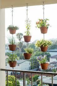 pflanzen fã r den balkon die besten 25 terrassen deko ideen auf terrassen diy