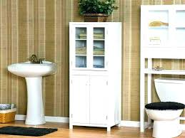 Bathroom Counter Shelves Vanity Storage Ideas Bathroom Vanity Storage Solutions Bathroom