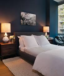 Navy Accent Wall Bedroom